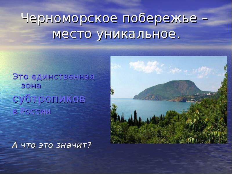 prirodnaya-zona-v-sochi