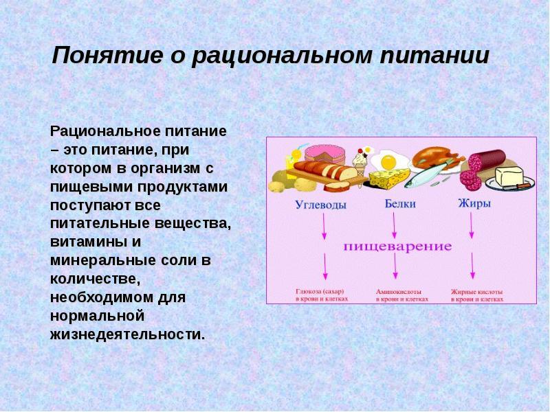 Системы питания и диеты Реферат тему система питания
