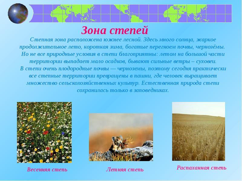 какое из утверждений о животном мире природных зон россии верно