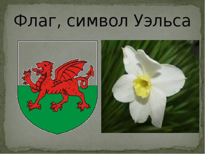 Картинки символа уэльса