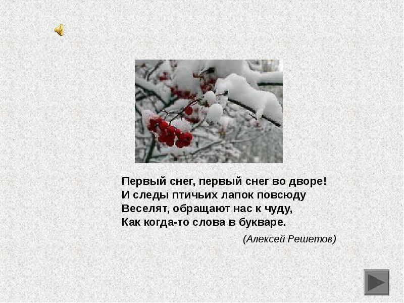 разным стихи на тему первый снег ради
