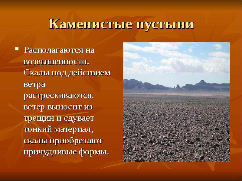Реферат на тему растения полупустынь и пустынь Интересное в мире  реферат на тему растения полупустынь и пустынь спортивные бандажи mueller