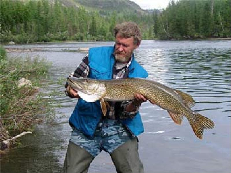 речка купырка пос жатва какая рыба водится