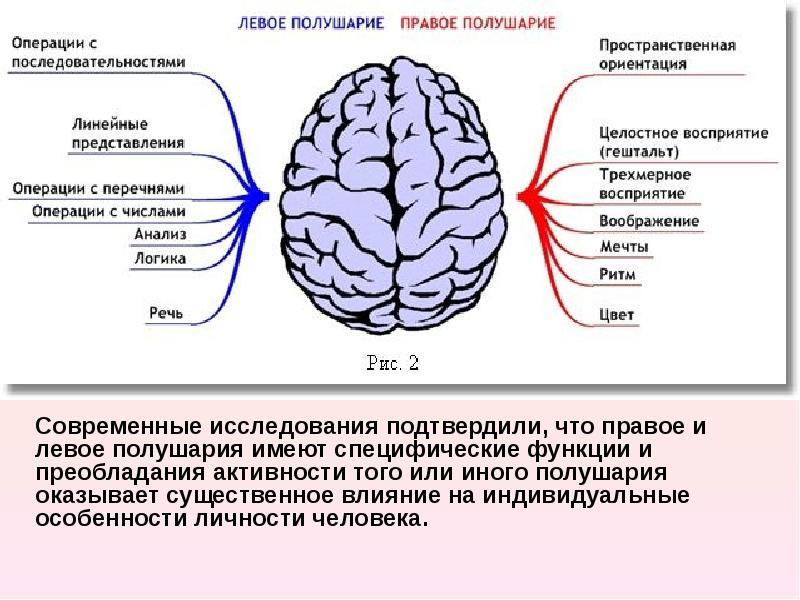 Как сделать чтобы заработал весь мозг