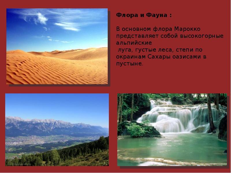 Марокко реферат по географии Марокко реферат географии