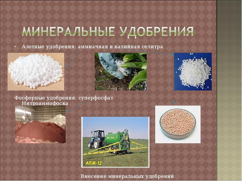 заключение: помните, презентация на тему почвенный фосфор и калий даже самое высококачественное