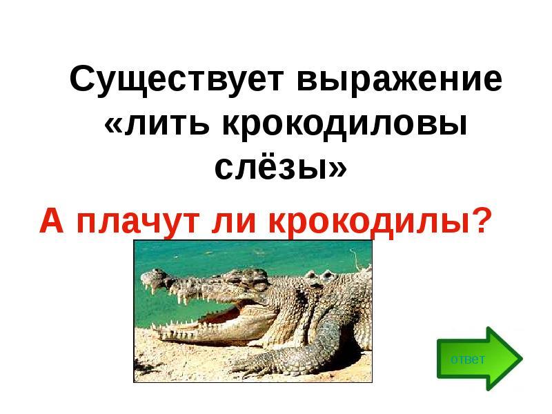 Почему говорят  лить крокодиловы слезы ?