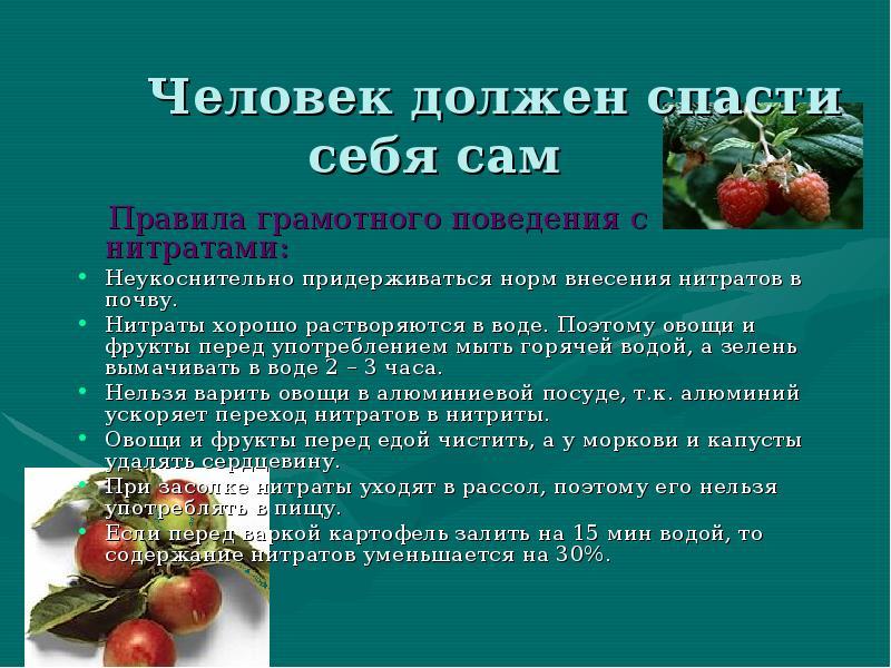 Опасные вещества в пище нитраты нитриты пестициды