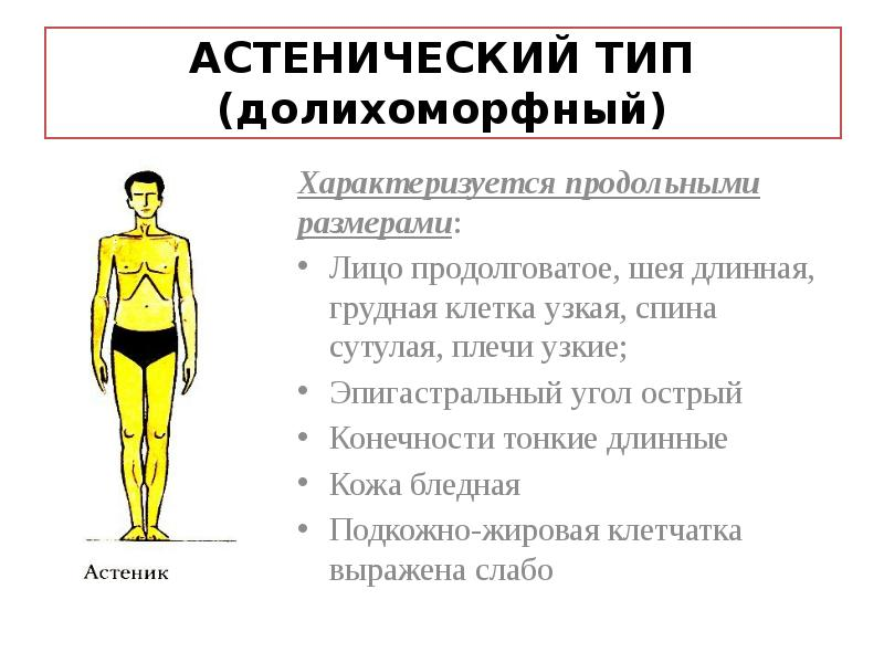 были несносными, астенический тип телосложения фото помогают нам