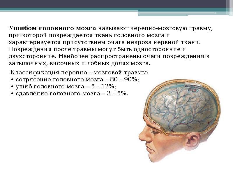 Был ушиб и сотрясение мозга