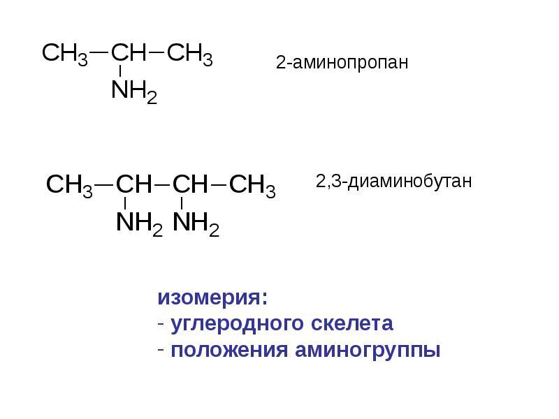 Азотсодержащие органические соединения доклад 96