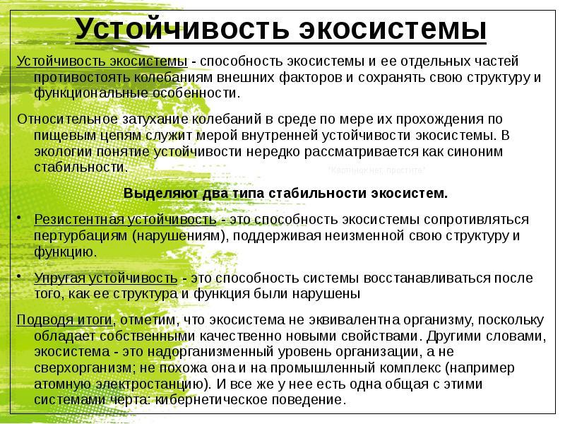 Доклад на тему структура экологической системы 3421
