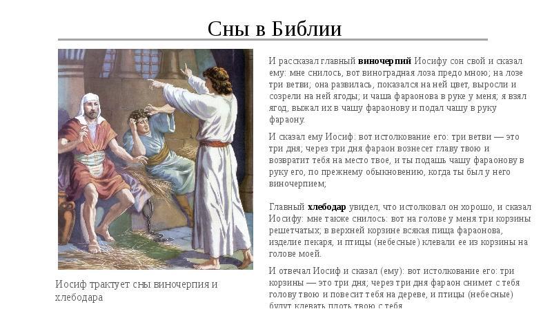 Сон c библией в соннике растолковывается как: приснившаяся библия сулит чистую и невинную радость.