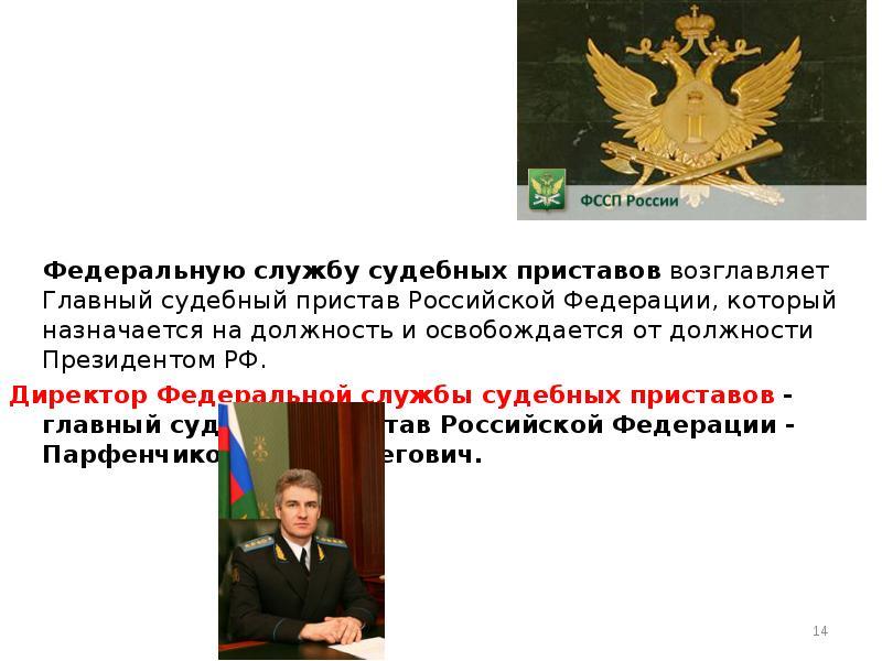 Белгородского областного кого назначили на должность главного судебного пристава россии брату