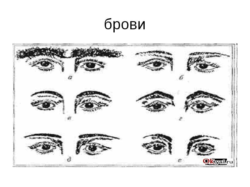 Физиогномика глаза в картинках значение, для поздравления