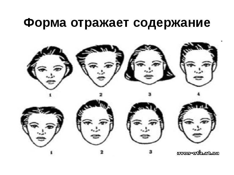 физиогномика лица в картинках обучение лоб объявления фото