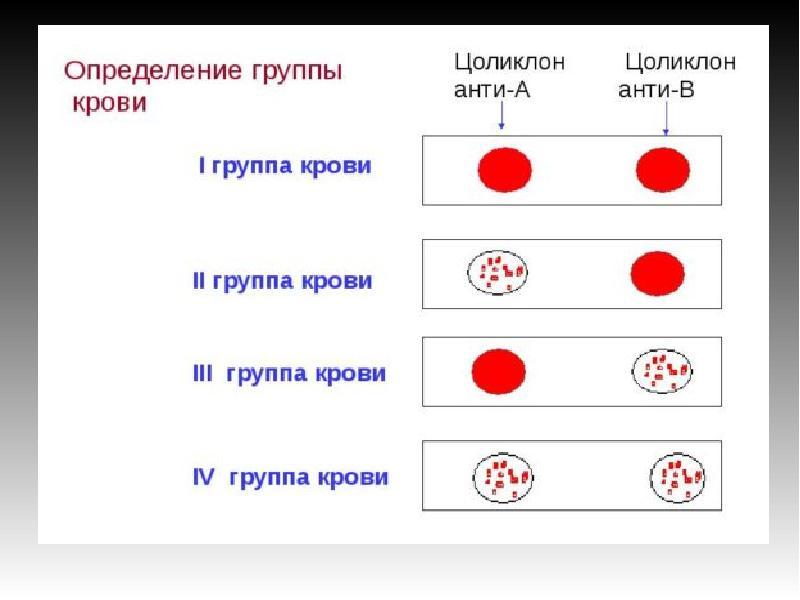 смартфон включен, участие м с в определении группы крови заразиться ВИЧ СПИДом