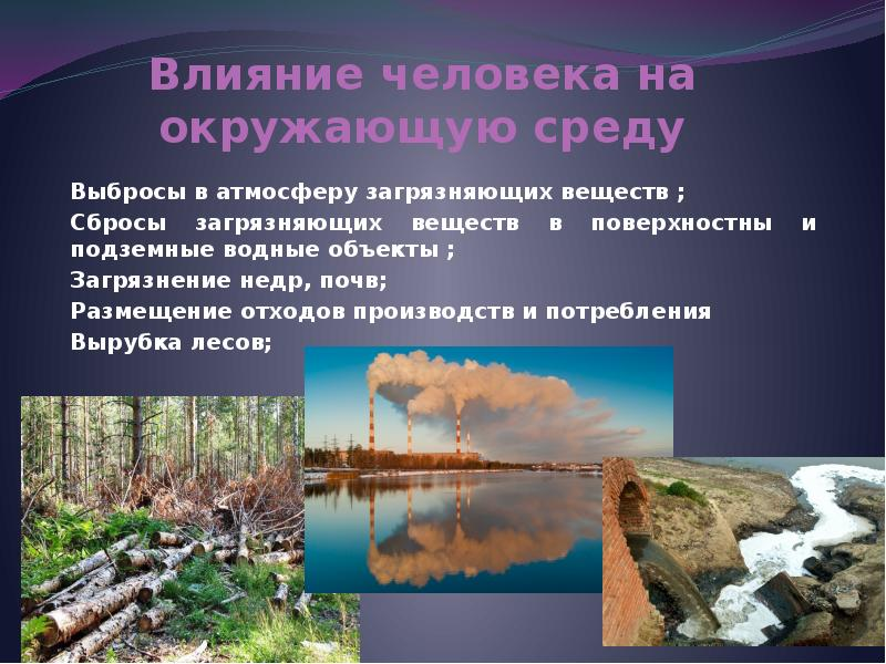 Воздействие негативных факторов окружающей среды на человека