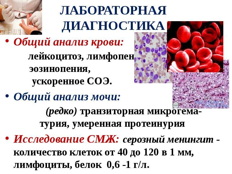 Анализ крови менингите какой при при канала анализы цервикального беременности из