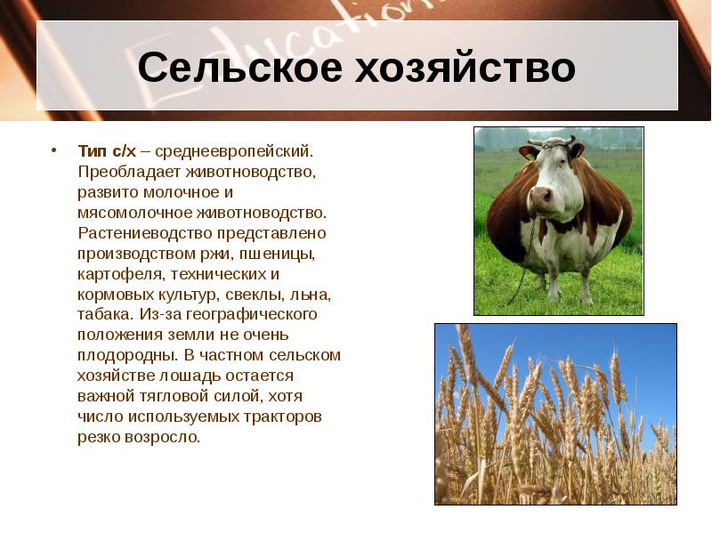 Животноводство знасение отрасли в народном хозяйстве