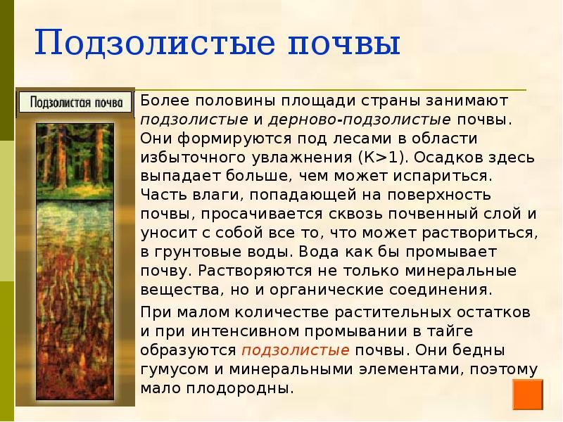 дерново подзолистые почвы белоруссии просмотра