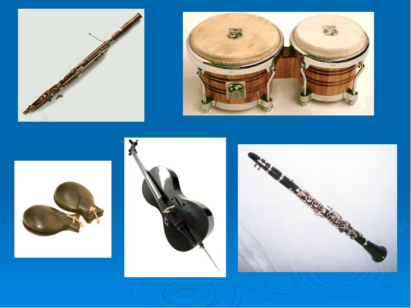 the evolution of music and musical instruments Top 10 musical instruments of the 18th century music is something that is said to have soothed even the savage beast the clapping of hands, stomping of feet, and dripping of rains, music has evolved millenniums ago.