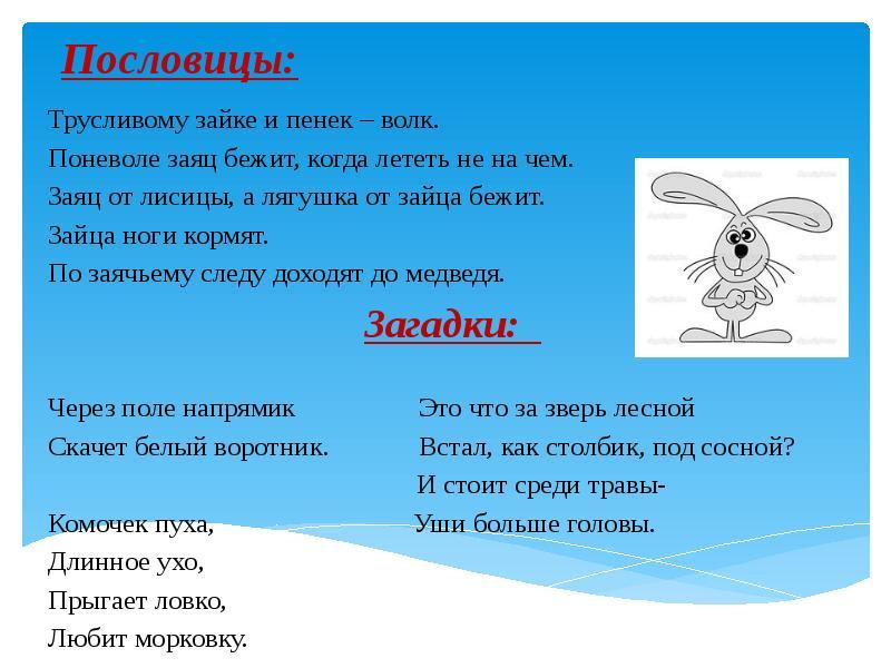 Все о зайце пословицы 24