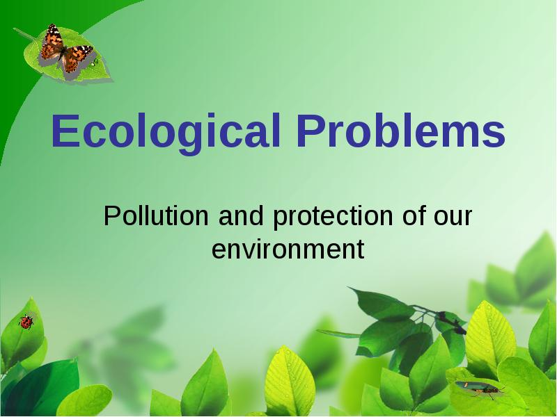 essay about environmental concern