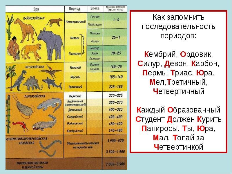 картинки геологические эры рыхлые толстые