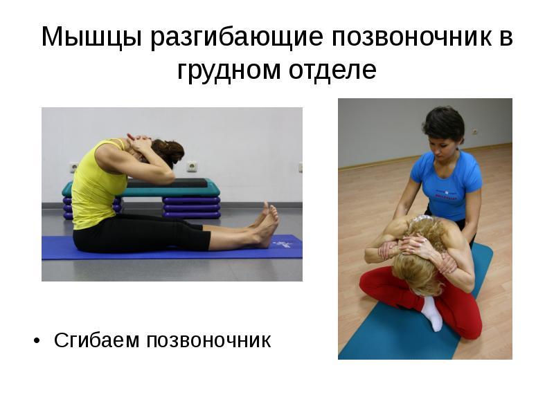 Растяжение мышцы позвоночника 69