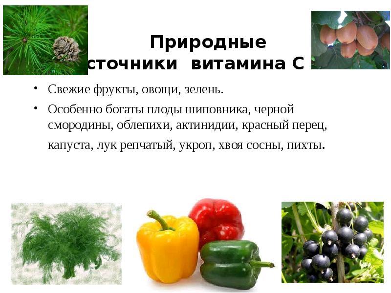 Лекарственные растения и сырье, содержащие витамины. (Лекция 5) - презентация, доклад, проект