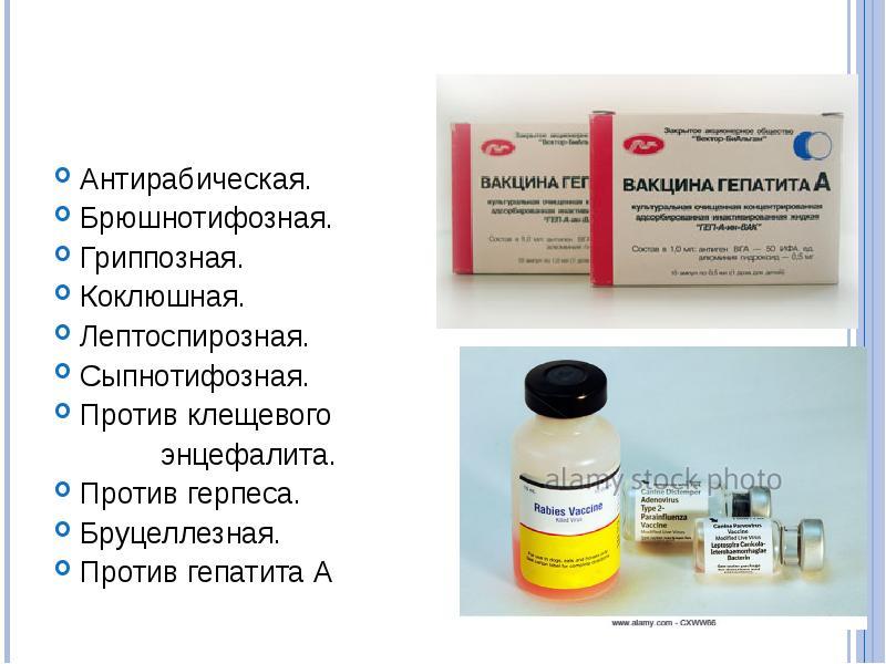 Иммунологические методы в профилактике, диагностике и лечении инфекционных болезней - презентация, доклад, проект