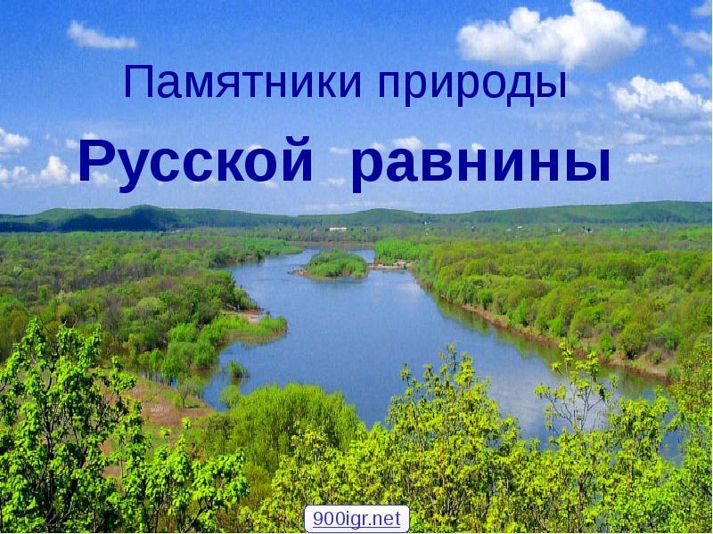 С леса русской равнины птицами знакомство экскурсия