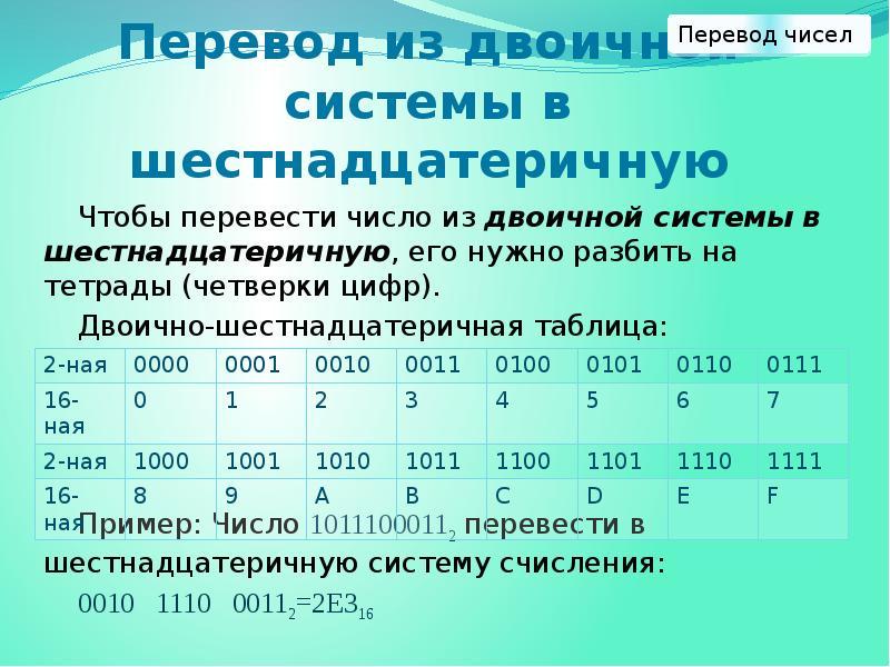 Бинарные типы данных чисел