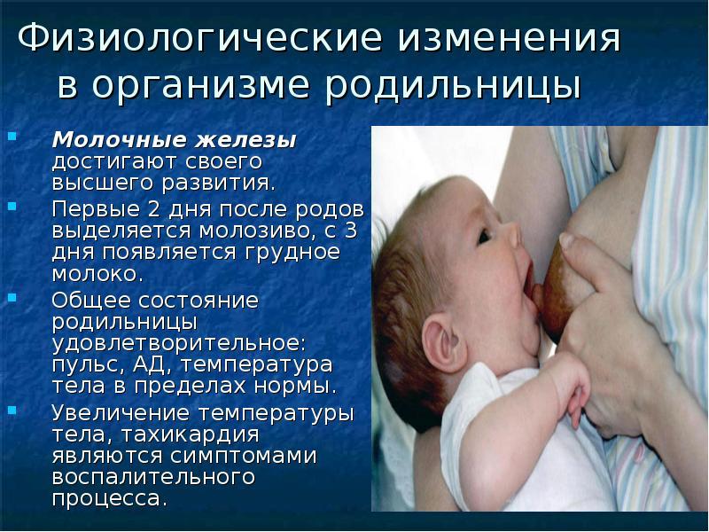 Рацион питания для беременных в третьем триместре 42