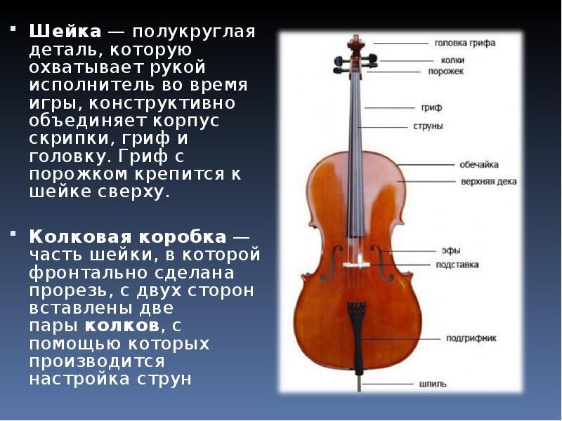 Доклад по теме скрипка 2257
