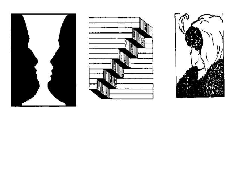 Иллюзии картинки по психологии