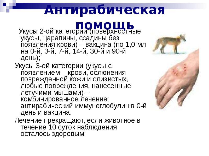 Повреждение кожи: проводят обработку раны, ежедневно делают перевязки..