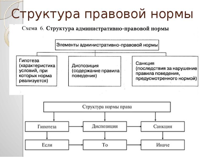 Структура правовой нормы контрольная работа 5397