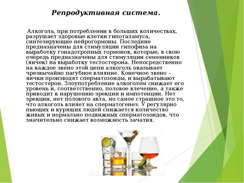 alkogol-i-spermatogenez