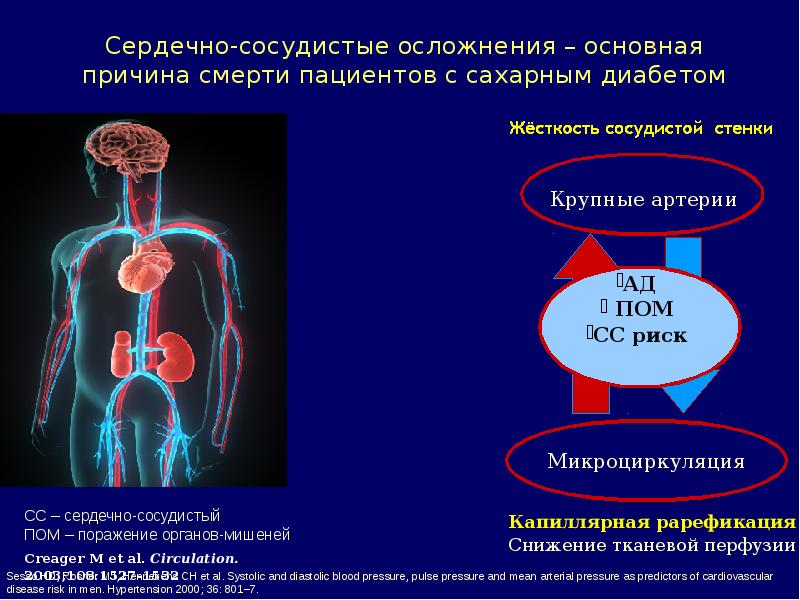 Осложнения и причины смерти при сахарном диабете