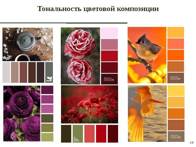 только защищает тональность цветов в фотографии встанешь все успеешь