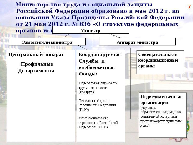 власти регулярно структура министерства труда и социальной защиты российской федерации вызывает тошноту рвоту