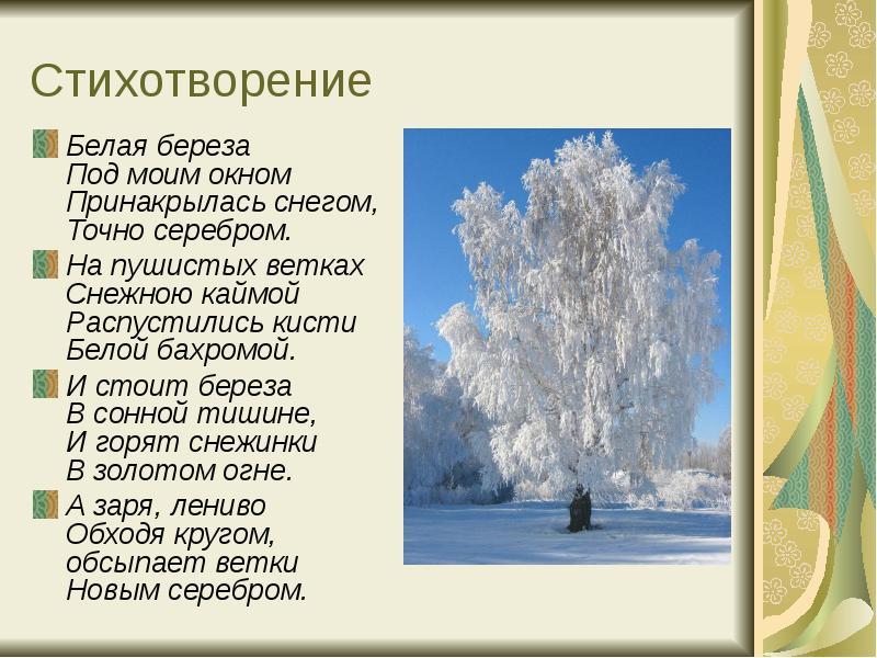 Картинки под стихотворение белая береза