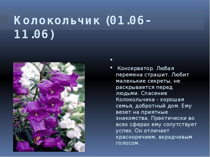 Поздравление цветочного гороскопа