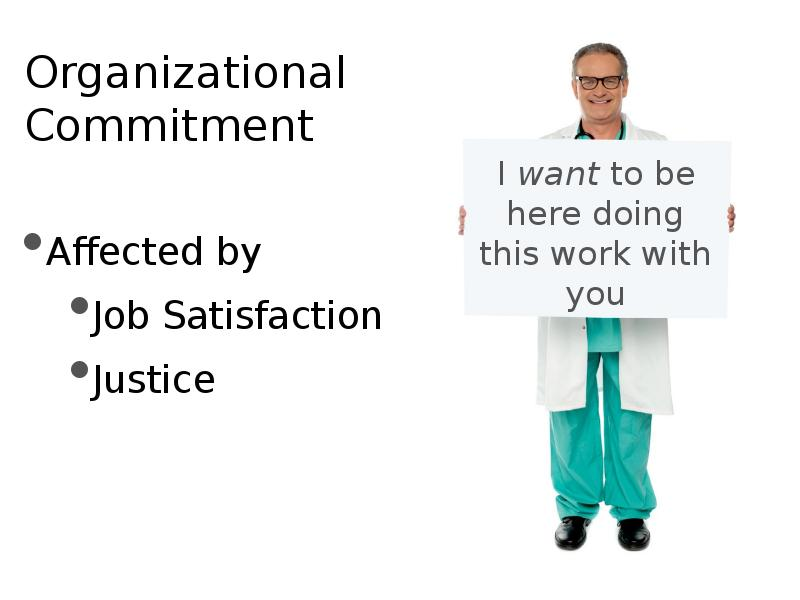 job satisfaction work attitude and stress tolerance Theory of work stress 7 stress and satisfaction: the inter-relationship the basic factors, work, stress, and job satisfaction, are vast in their scope, intangible to a greater an entirely different attitude leads to such questions as: is not work merely a constraint or even a necessary evil.