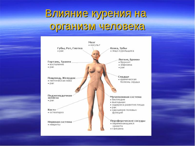 Вред курения на организм человека видео