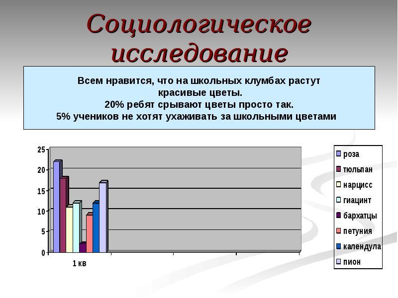 пляж картинки результатов социологических опросов сказать