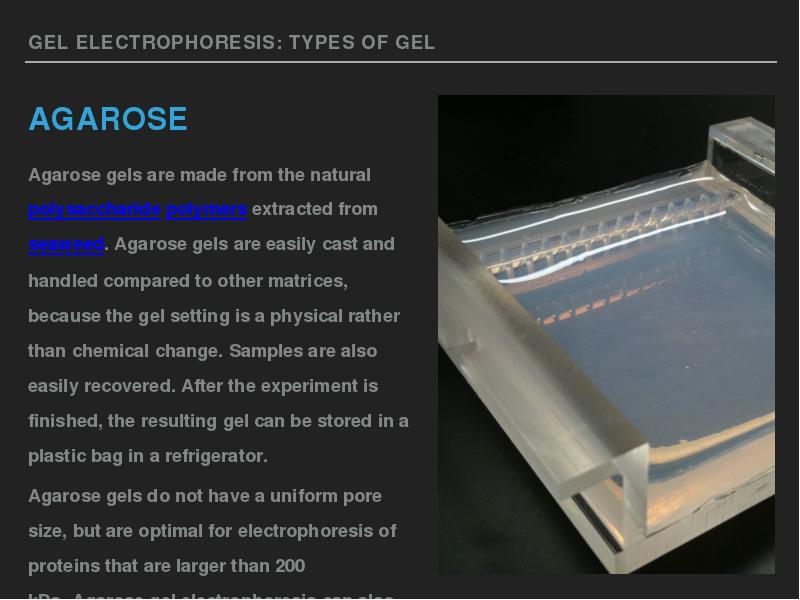 hypothesis electrophoresis lab agarose 1x tae buffer running agarose gel electrophoresis  draw a model of your hypothesis on the pre-lab activity sheet  gel electrophoresis is a laboratory method.