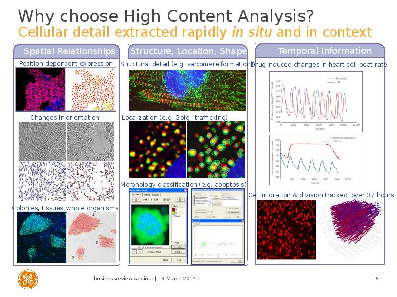 an analysis of cells Analyzing stem cell populations using flow cytometry  • pluripotent cell analysis • neuronal progenitor cells • phosphorylation analysis gating strategies for stem cell populations using flow cytometry for research use only not for use in diagnostic or therapeutic procedures.